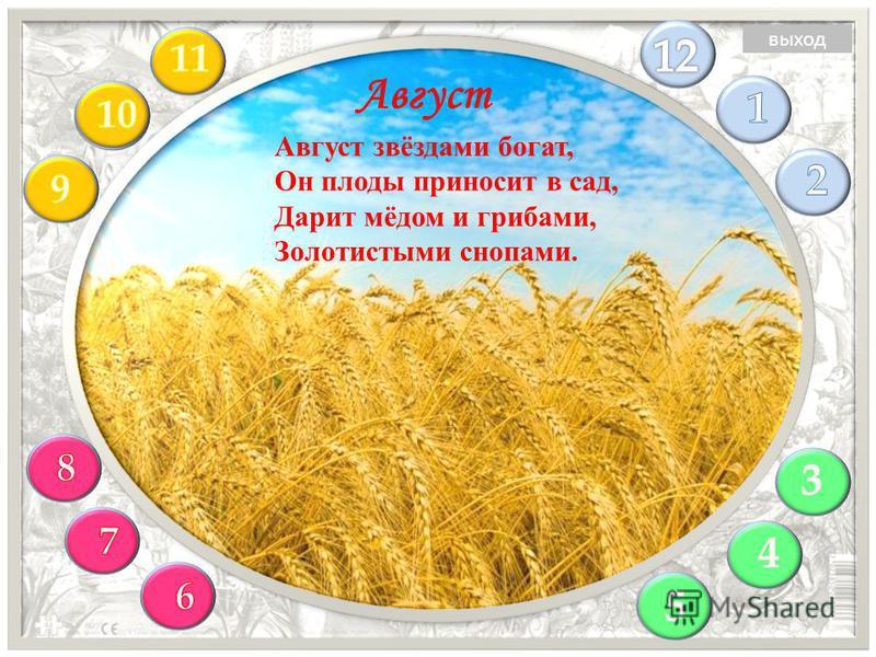 Август звёздами богат, Он плоды приносит в сад, Дарит мёдом и грибами, Золотистыми снопами. Август выход