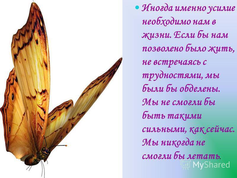Иногда именно усилие необходимо нам в жизни. Если бы нам позволено было жить, не встречаясь с трудностями, мы были бы обделены. Мы не смогли бы быть такими сильными, как сейчас. Мы никогда не смогли бы летать.