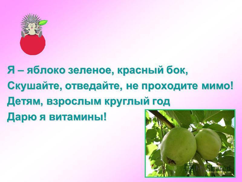 Я – яблоко зеленое, красный бок, Скушайте, отведайте, не проходите мимо! Детям, взрослым круглый год Дарю я витамины!