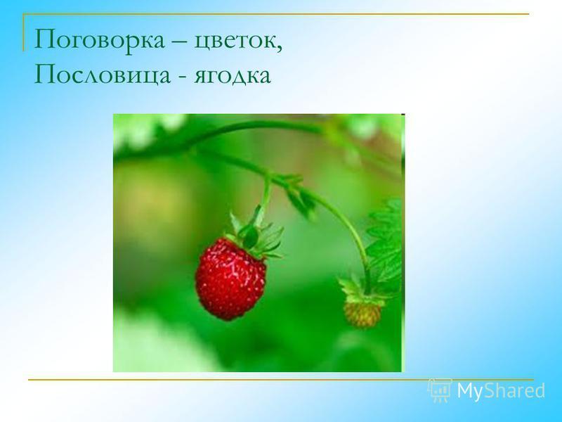 Поговорка – цветок, Пословица - ягодка
