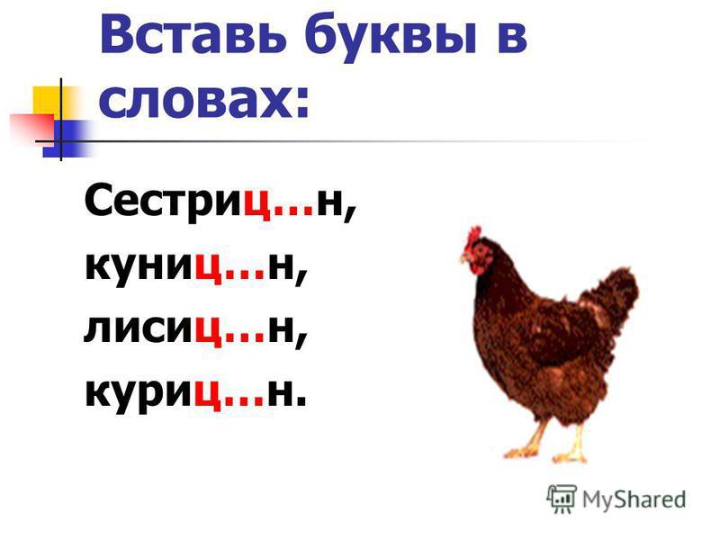 Вставь буквы в словах: Сестриц…н, куниц…н, лисиц…н, куриц…н.