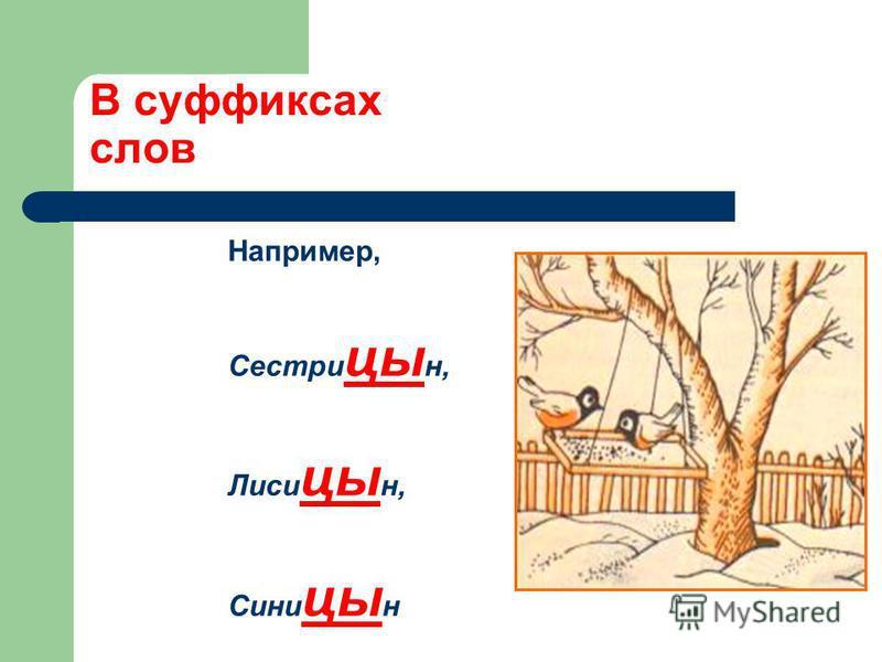 В суффиксах слов Например, Сестри цы н, Лиси цы н, Сини цы н