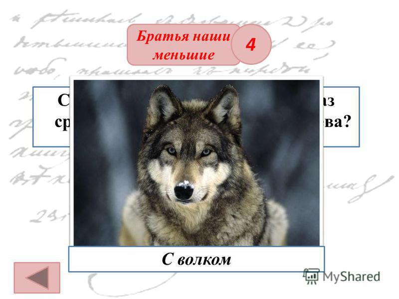 ОТВЕТ Братья наши меньшие С каким животным несколько раз сравнивает А. С. Пушкин Пугачева? 4 С волком