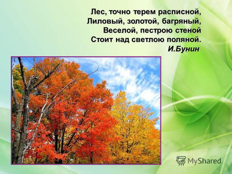 Лес, точно терем расписной, Лиловый, золотой, багряный, Веселой, пестрою стеной Стоит над светлою поляной. И.Бунин
