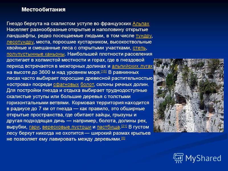 Гнездо беркута на скалистом уступе во французских Альпах Альпах Населяет разнообразные открытые и наполовину открытые ландшафты, редко посещаемые людьми, в том числе тундру, лесотундру, места, поросшие кустарником, высокоствольные хвойные и смешанные
