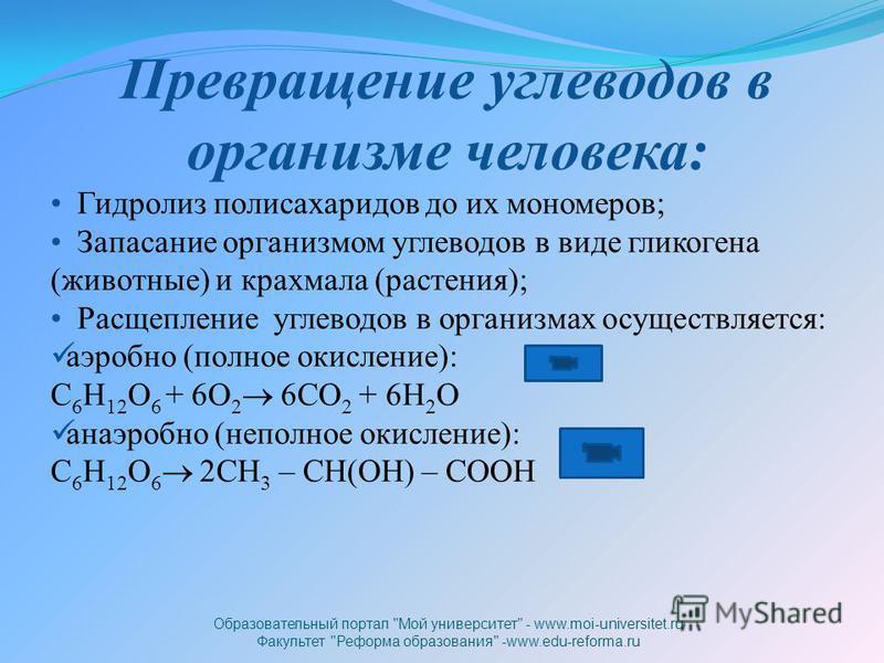 Превращение углеводов в организме человека: Гидролиз полисахаридов до их мономеров; Запасание организмом углеводов в виде гликогена (животные) и крахмала (растения); Расщепление углеводов в организмах осуществляется: аэробно (полное окисление): C 6 H