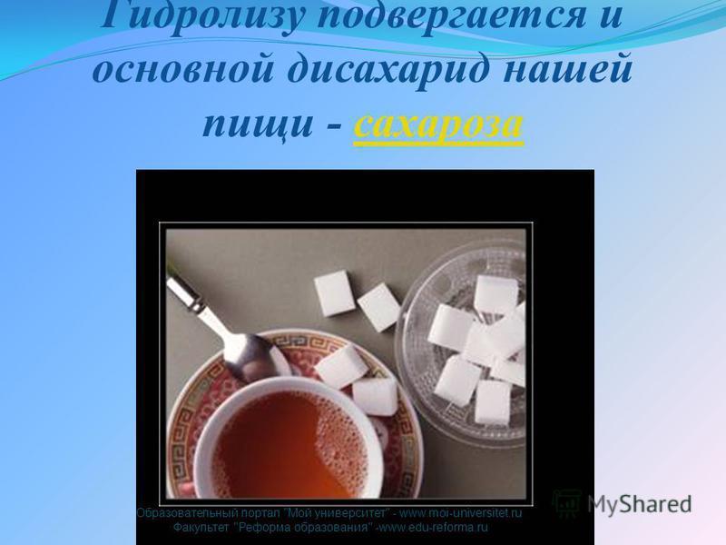 Гидролизу подвергается и основной дисахарид нашей пищи - сахароза Образовательный портал Мой университет - www.moi-universitet.ru Факультет Реформа образования -www.edu-reforma.ru