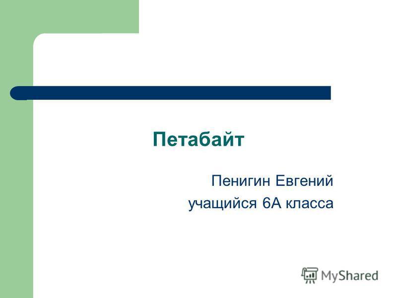 Петабаит Пенигин Евгений учащийся 6А класса