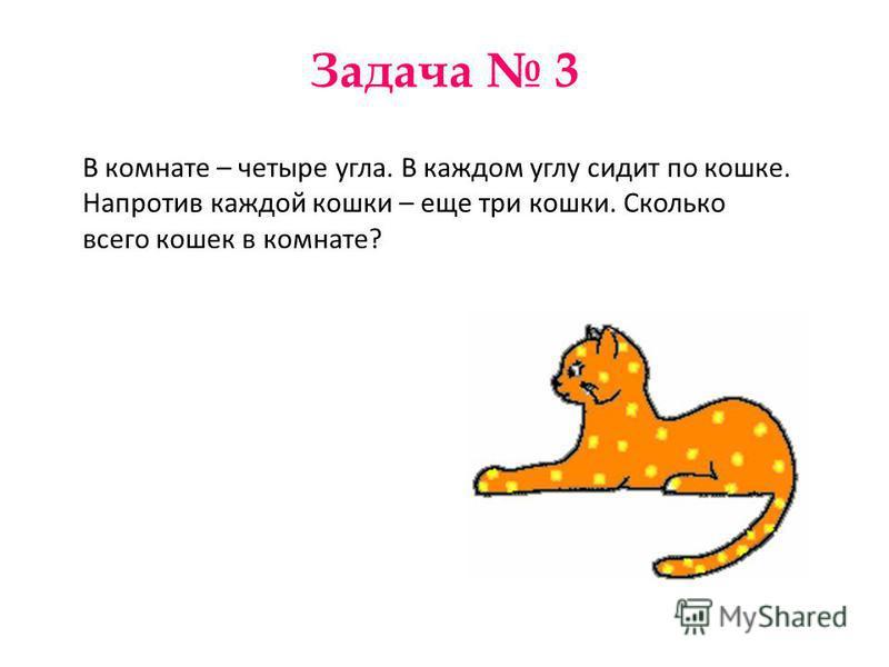 Задача 3 В комнате – четыре угла. В каждом углу сидит по кошке. Напротив каждой кошки – еще три кошки. Сколько всего кошек в комнате?