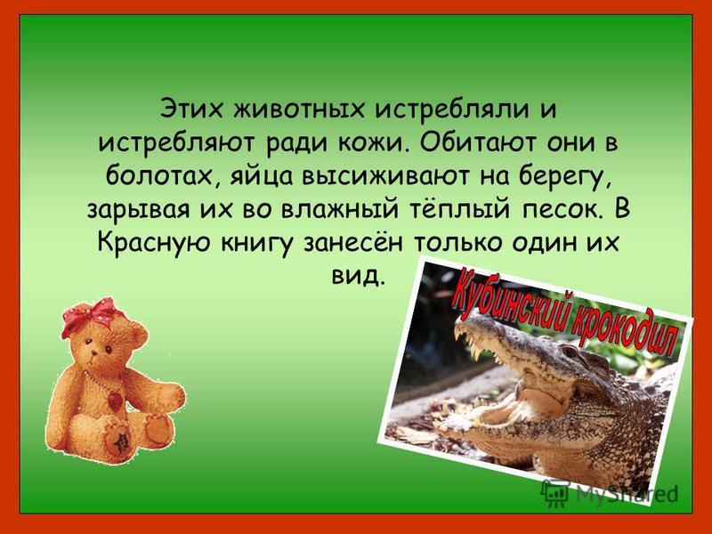 Этих животных истребляли и истребляют ради кожи. Обитают они в болотах, яйца высиживают на берегу, зарывая их во влажный тёплый песок. В Красную книгу занесён только один их вид.