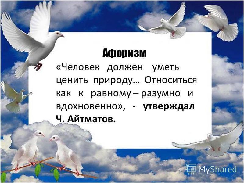 Афоризм «Человек должен уметь ценить природу… Относиться как к равному – разумно и вдохновенно», - утверждал Ч. Айтматов.