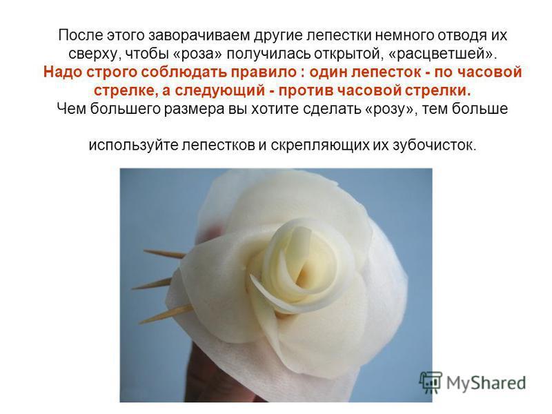 После этого заворачиваем другие лепестки немного отводя их сверху, чтобы «роза» получилась открытой, «расцветшей». Надо строго соблюдать правило : один лепесток - по часовой стрелке, а следующий - против часовой стрелки. Чем большего размера вы хотит