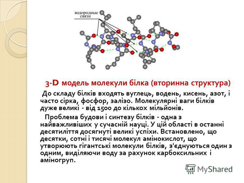 3-D модель молекули білка ( вторинна структура ) До складу білків входять вуглець, водень, кисень, азот, і часто сірка, фосфор, залізо. Молекулярні ваги білків дуже великі - від 1500 до кількох мільйонів. Проблема будови і синтезу білків - одна з най