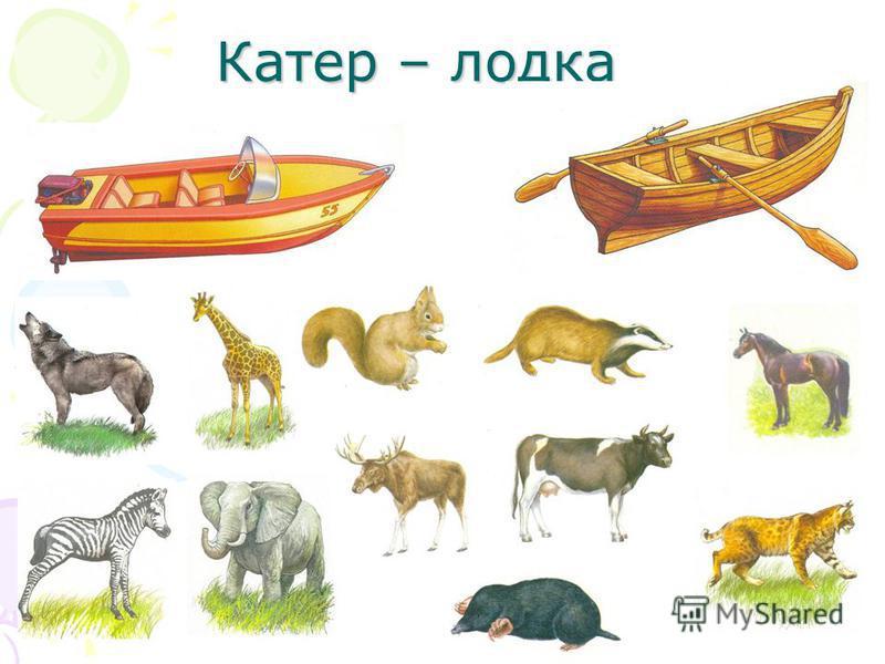 Катер – лодка