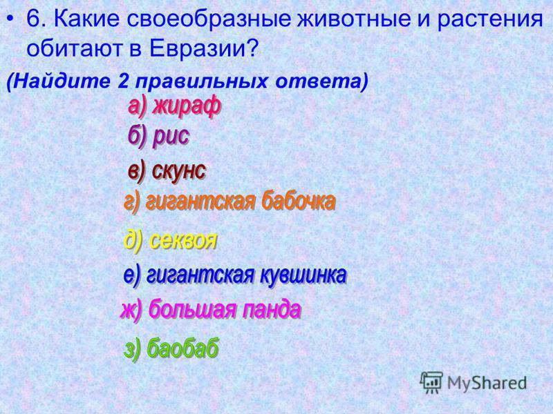 6. Какие своеобразные животные и растения обитают в Евразии? (Найдите 2 правильных ответа)