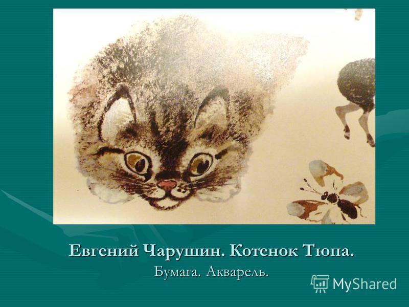 Евгений Чарушин. Котенок Тюпа. Бумага. Акварель.