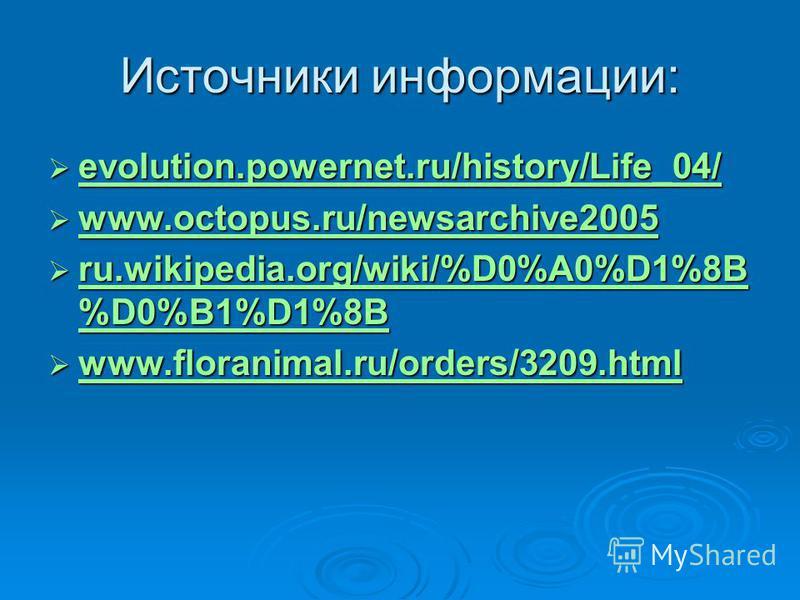 Источники информации: evolution.powernet.ru/history/Life_04/ evolution.powernet.ru/history/Life_04/ evolution.powernet.ru/history/Life_04/ www.octopus.ru/newsarchive2005 www.octopus.ru/newsarchive2005 www.octopus.ru/newsarchive2005 ru.wikipedia.org/w