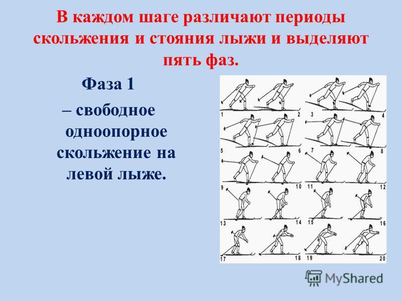 В каждом шаге различают периоды скольжения и стояния лыжи и выделяют пять фаз. Фаза 1 – свободное одноопорное скольжение на левой лыже.