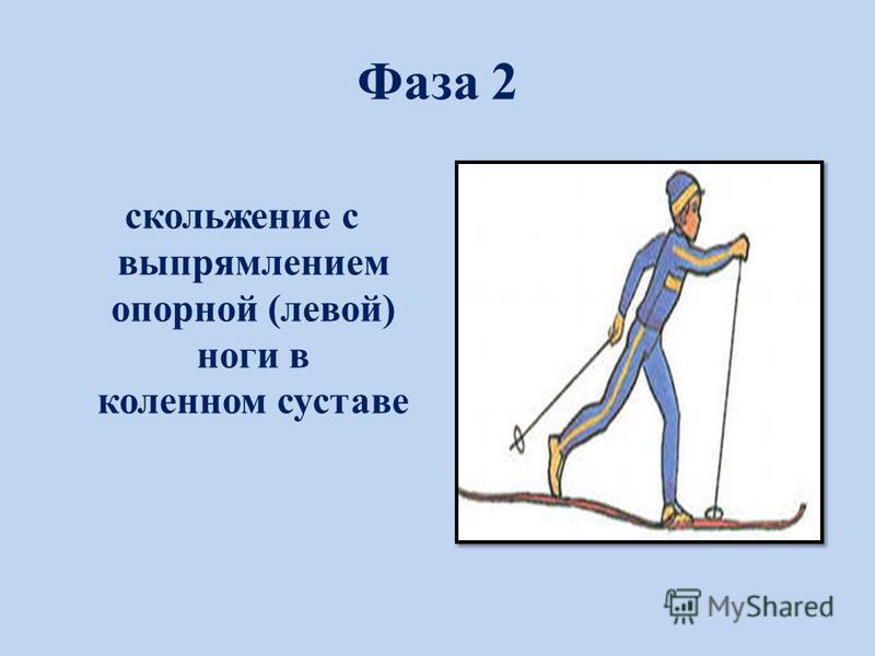 Фаза 2 скольжение с выпрямлением опорной (левой) ноги в коленном суставе