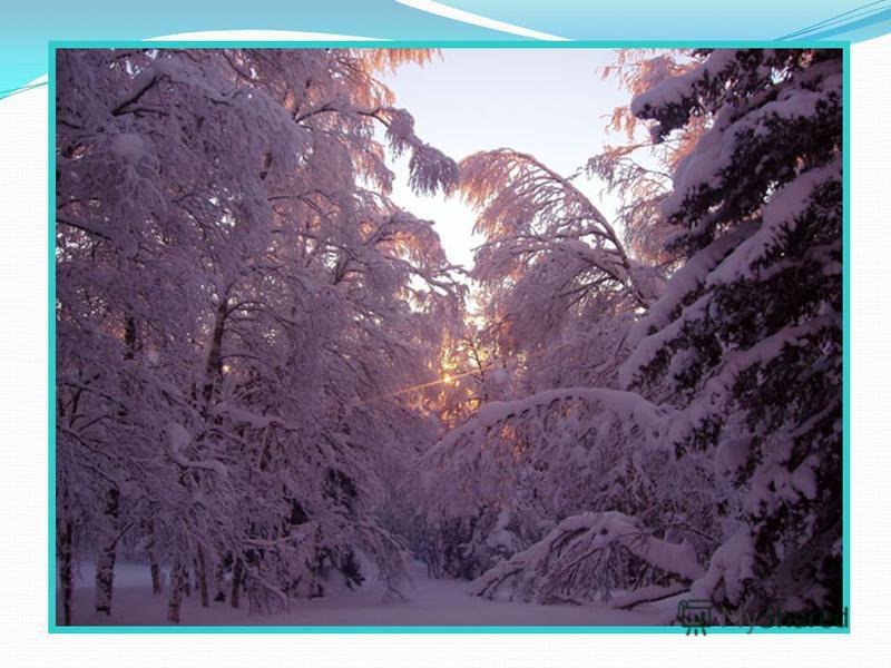 Презентация к уроку Окружающий мир, 1 класс Тема урока: «Снег и лёд. Какие свойства имеет снег и лёд?» (урок – исследование)