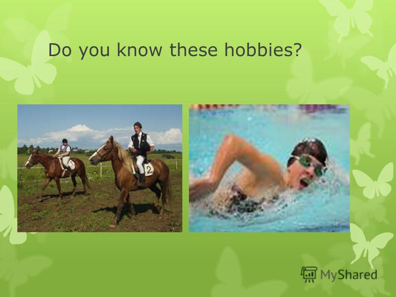 Do you know these hobbies? Horseracing. Swimming.