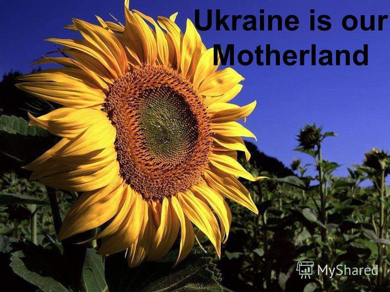 Ukraine Ukraine is our Motherland