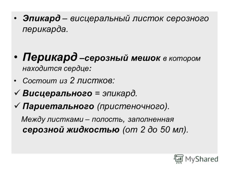 Эпикард – висцеральный листок серозного перикарда. Перикард –серозный мешок в котором находится сердце: Состоит из 2 листков: Висцерального = эпикард. Париетального (пристеночного). Между листками – полость, заполненная серозной жидкостью (от 2 до 50