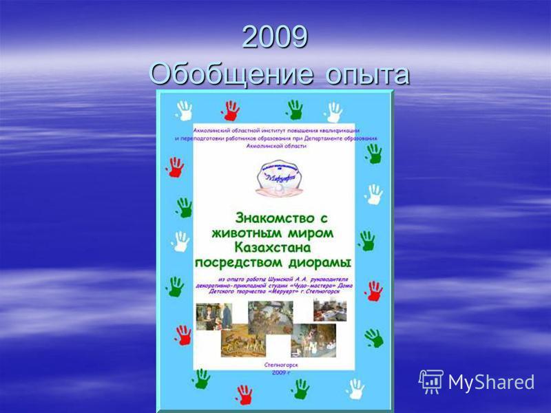 2009 Обобщение опыта