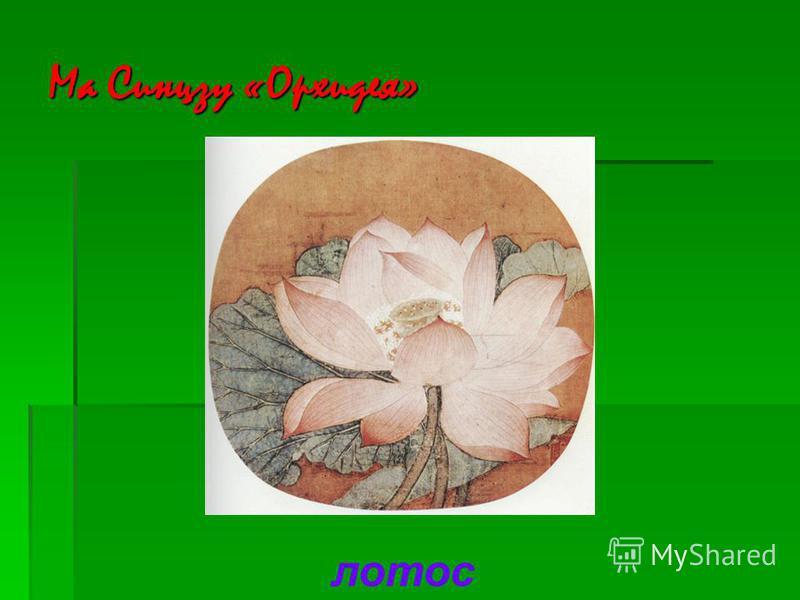 Ма Синцзу «Орхидея» лотос