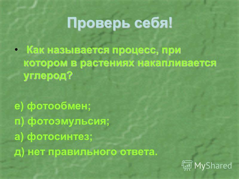 Проверь себя! Как называется процесс, при котором в растениях накапливается углерод? е) фото обмен; п) фотоэмульсия; а) фотосинтез; д) нет правильного ответа.