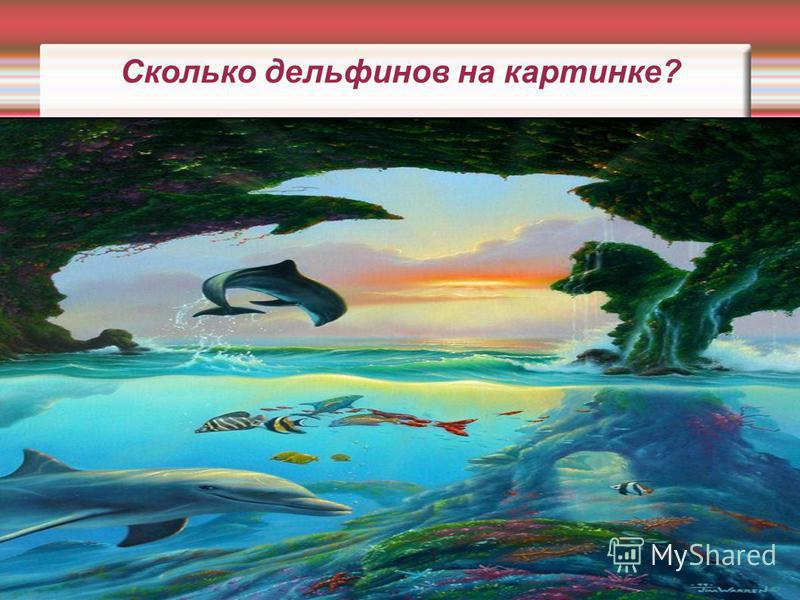 Сколько дельфинов на картинке?