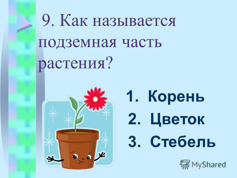 9. Как называется подземная часть растения? 1. Корень 2. Цветок 3. Стебель