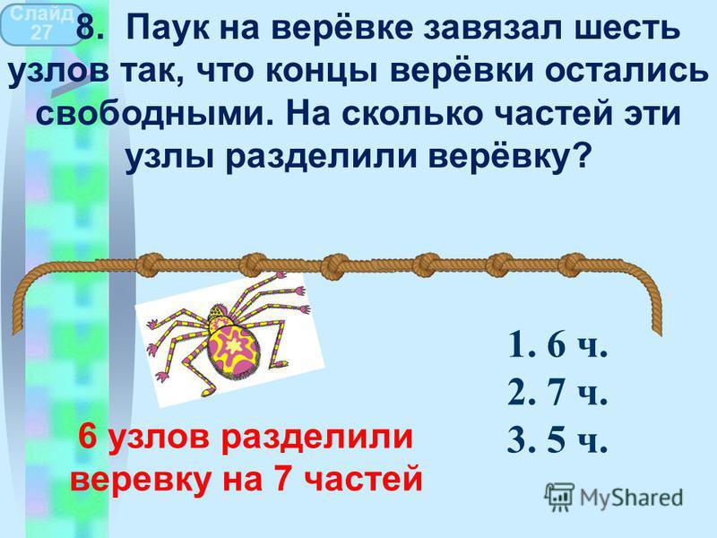 6 узлов разделили веревку на 7 частей Слайд 27 8. Паук на верёвке завязал шесть узлов так, что концы верёвки остались свободными. На сколько частей эти узлы разделили верёвку? 1. 6 ч. 2. 7 ч. 3. 5 ч.