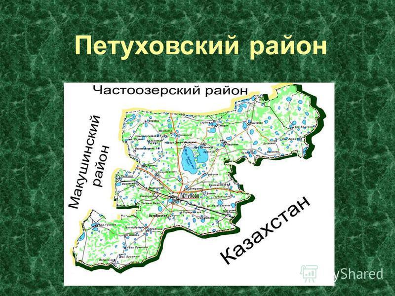 Петуховский район