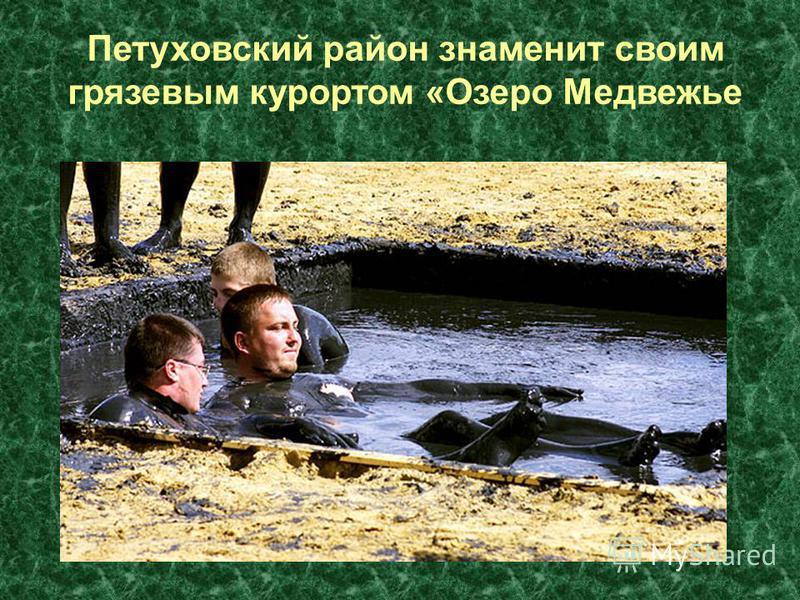 Петуховский район знаменит своим грязевым курортом «Озеро Медвежье