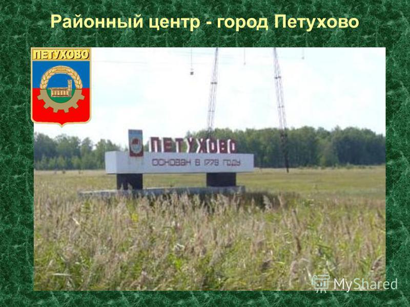 Районный центр - город Петухово