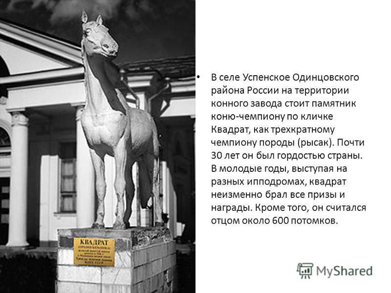 В селе Успенское Одинцовского района России на территории конного завода стоит памятник коню-чемпиону по кличке Квадрат, как трехкратному чемпиону породы (рысак). Почти 30 лет он был гордостью страны. В молодые годы, выступая на разных ипподромах, кв