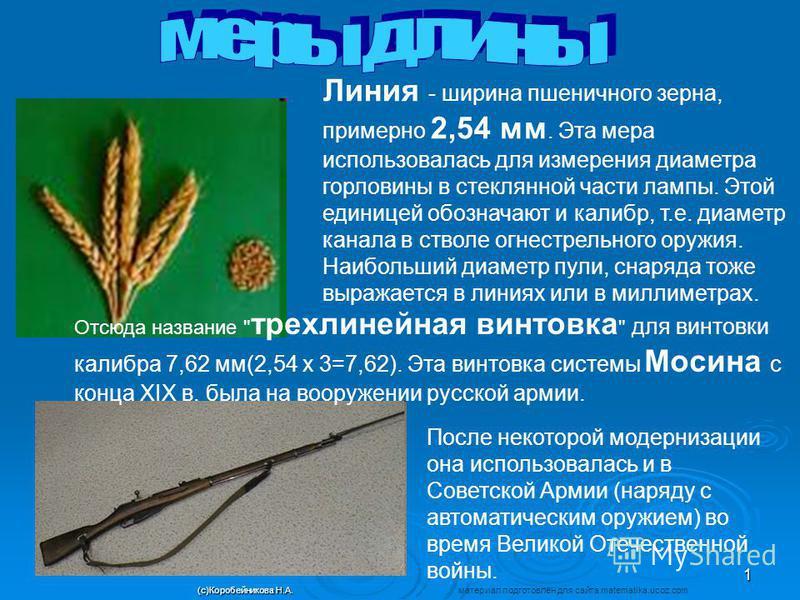 Линия - ширина пшеничного зерна, примерно 2,54 мм. Эта мера использовалась для измерения диаметра горловины в стеклянной части лампы. Этой единицей обозначают и калибр, т.е. диаметр канала в стволе огнестрельного оружия. Наибольший диаметр пули, снар