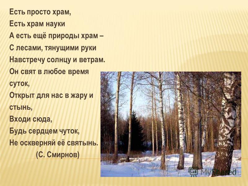 Есть просто храм, Есть храм науки А есть ещё природы храм – С лесами, тянущими руки Навстречу солнцу и ветрам. Он свят в любое время суток, Открыт для нас в жару и стынь, Входи сюда, Будь сердцем чуток, Не оскверняй её святынь. (С. Смирнов)