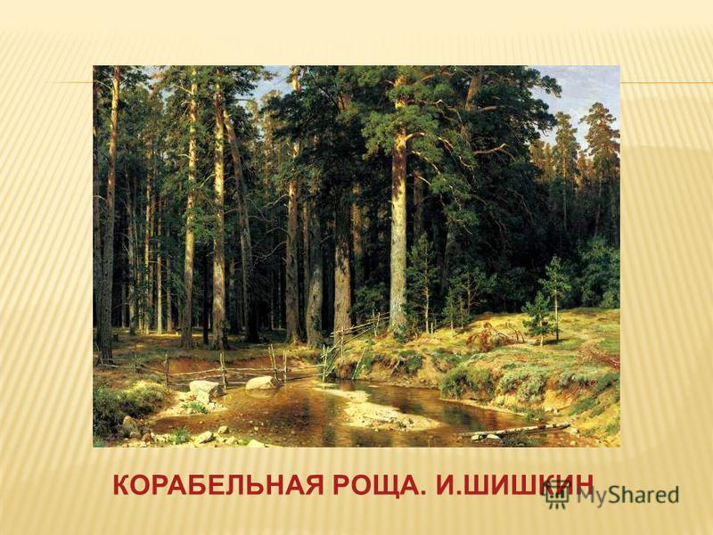 КОРАБЕЛЬНАЯ РОЩА. И.ШИШКИН
