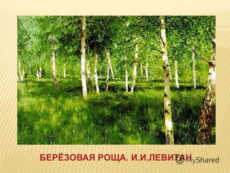 БЕРЁЗОВАЯ РОЩА. И.И.ЛЕВИТАН