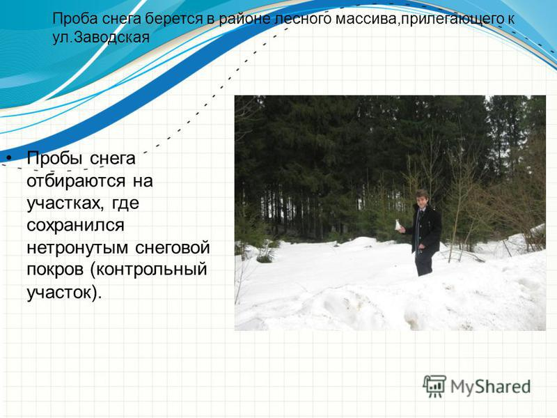 Проба снега берется в районе лесного массива,прилегающего к ул.Заводская Пробы снега отбираются на участках, где сохранился нетронутым снеговой покров (контрольный участок).