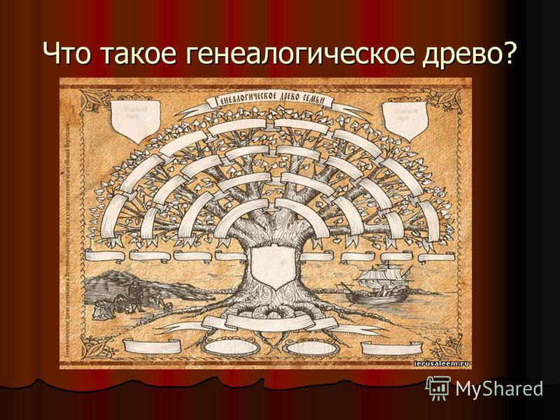 Что такое генеалогическое древо?