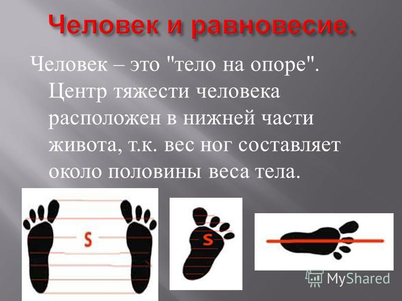 Человек – это  тело на опоре . Центр тяжести человека расположен в нижней части живота, т. к. вес ног составляет около половины веса тела.