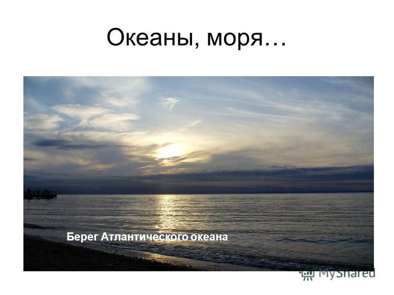 Океаны, моря…. Берег Атлантического океана