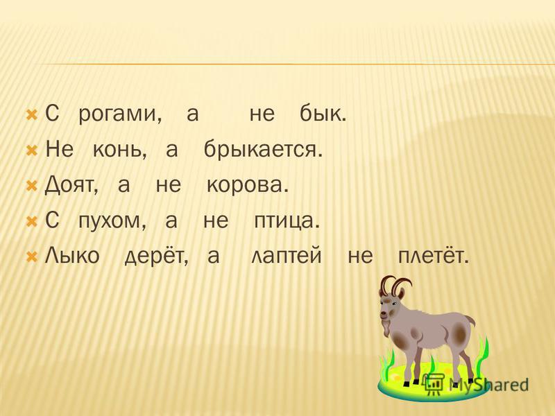 С рогами, а не бык. Не конь, а брыкается. Доят, а не корова. С пухом, а не птица. Лыко дерёт, а лаптей не плетёт.