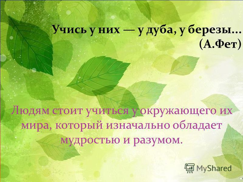 Учись у них у дуба, у березы... ( А. Фет ) Людям стоит учиться у окружающего их мира, который изначально обладает мудростью и разумом.