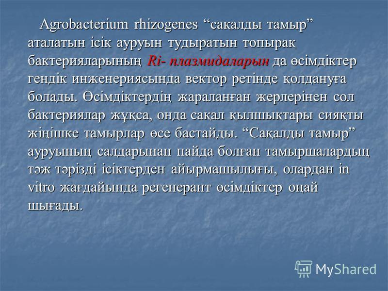 Agrobacterium rhizogenes сақалды тамыр аталатын ісік ауруын тудыратын топырақ бактерияларының Ri- плазмидаларын да өсімдіктер гендік инженериясында вектор ретінде қолдануға болады. Өсімдіктердің жараланған жерлерінен сол бактериялар жұқса, онда сақал