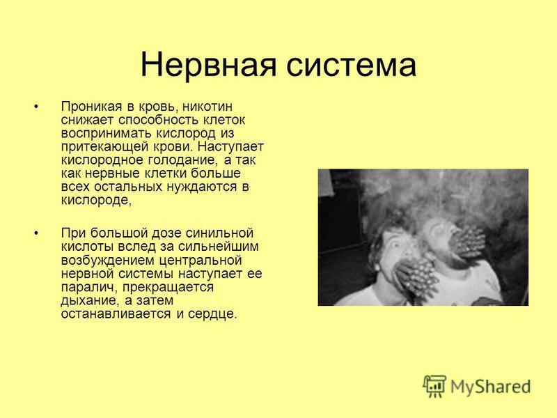 Нервная система Проникая в кровь, никотин снижает способность клеток воспринимать кислород из притекающей крови. Наступает кислородное голодание, а так как нервные клетки больше всех остальных нуждаются в кислороде, При большой дозе синильной кислоты