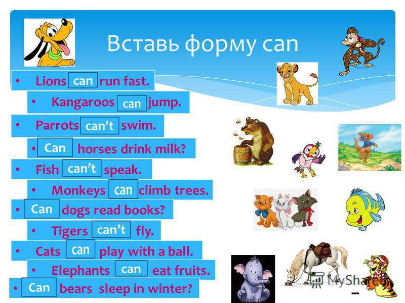 Вставь форму can Lions … run fast. Kangaroos … jump. Parrots … swim. … horses drink milk? Fish … speak. Monkeys … climb trees. … dogs read books? Tigers … fly. Cats … play with a ball. Elephants … eat fruits. … bears sleep in winter? can Can cant